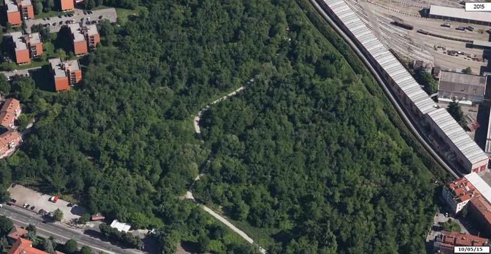 Ufficio Verde Comune Di Bologna : Prati di caprara chi firmerà l abbattimento di un bosco