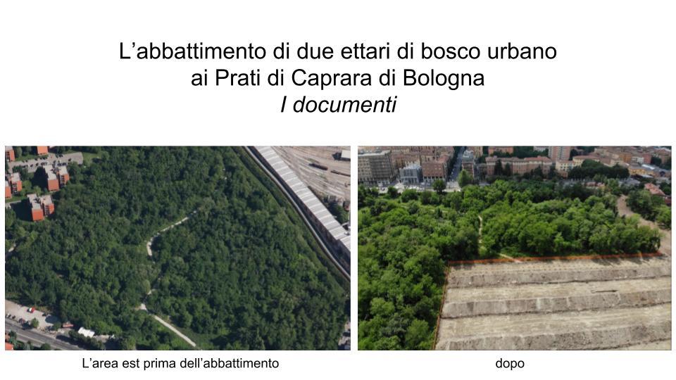 Prati di Caprara: i documenti